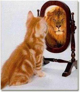 kucing yg menyangka dirinya singa